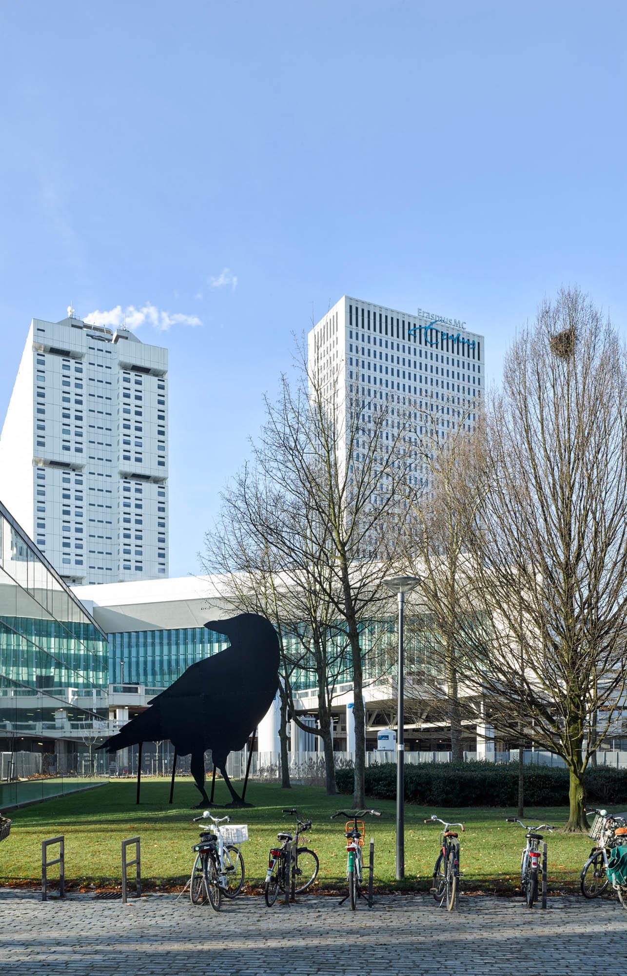 Opp 004750 - Rotterdam: Spielwiese verrückter Architektur von Weltruf