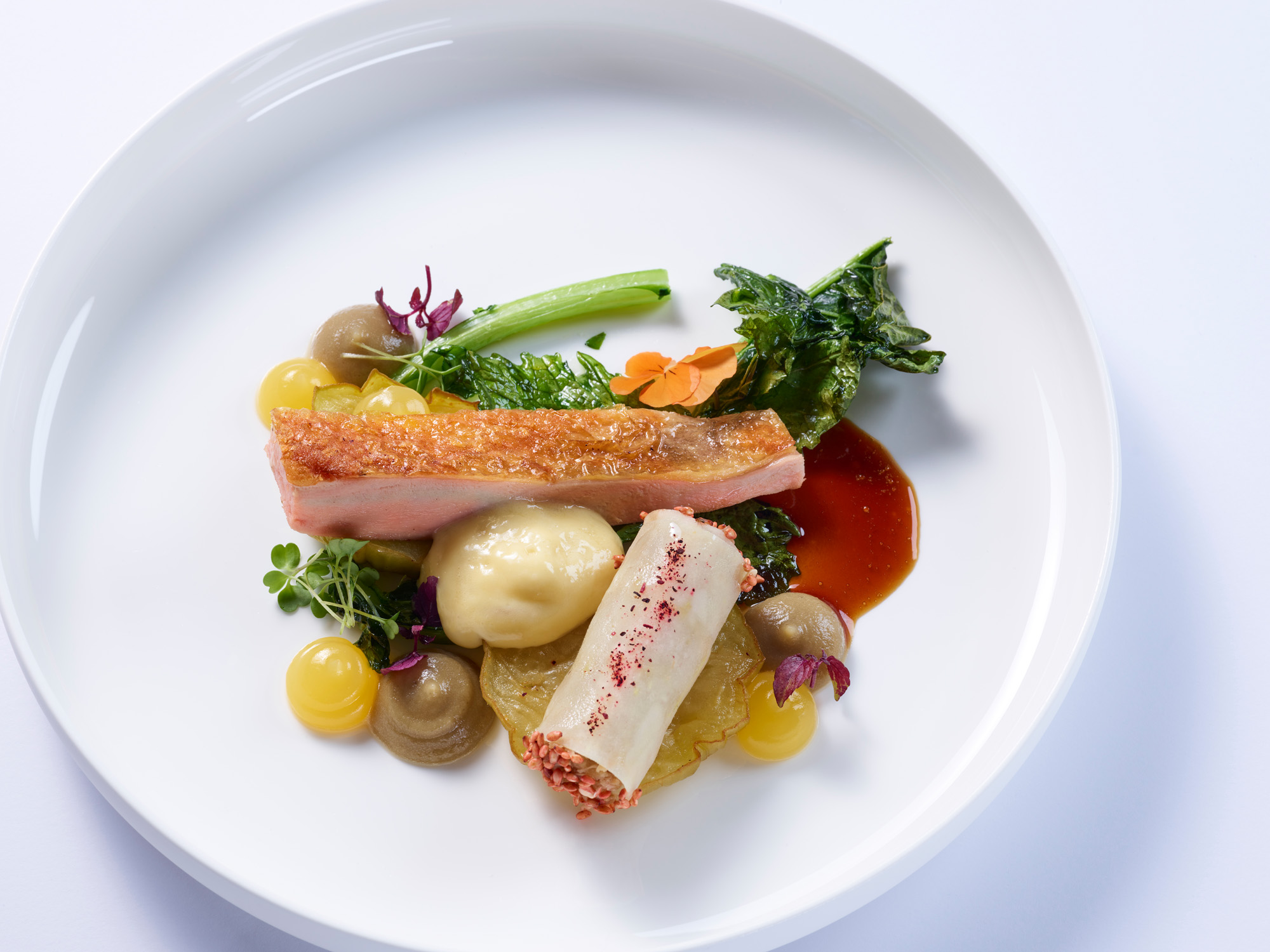 iSi Speisemeisterei 21 9 176183 - iSi Kulinarik: Inspiring Food